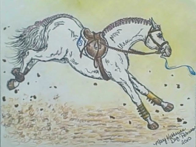 Braided Horse Bucking On The Lungeline